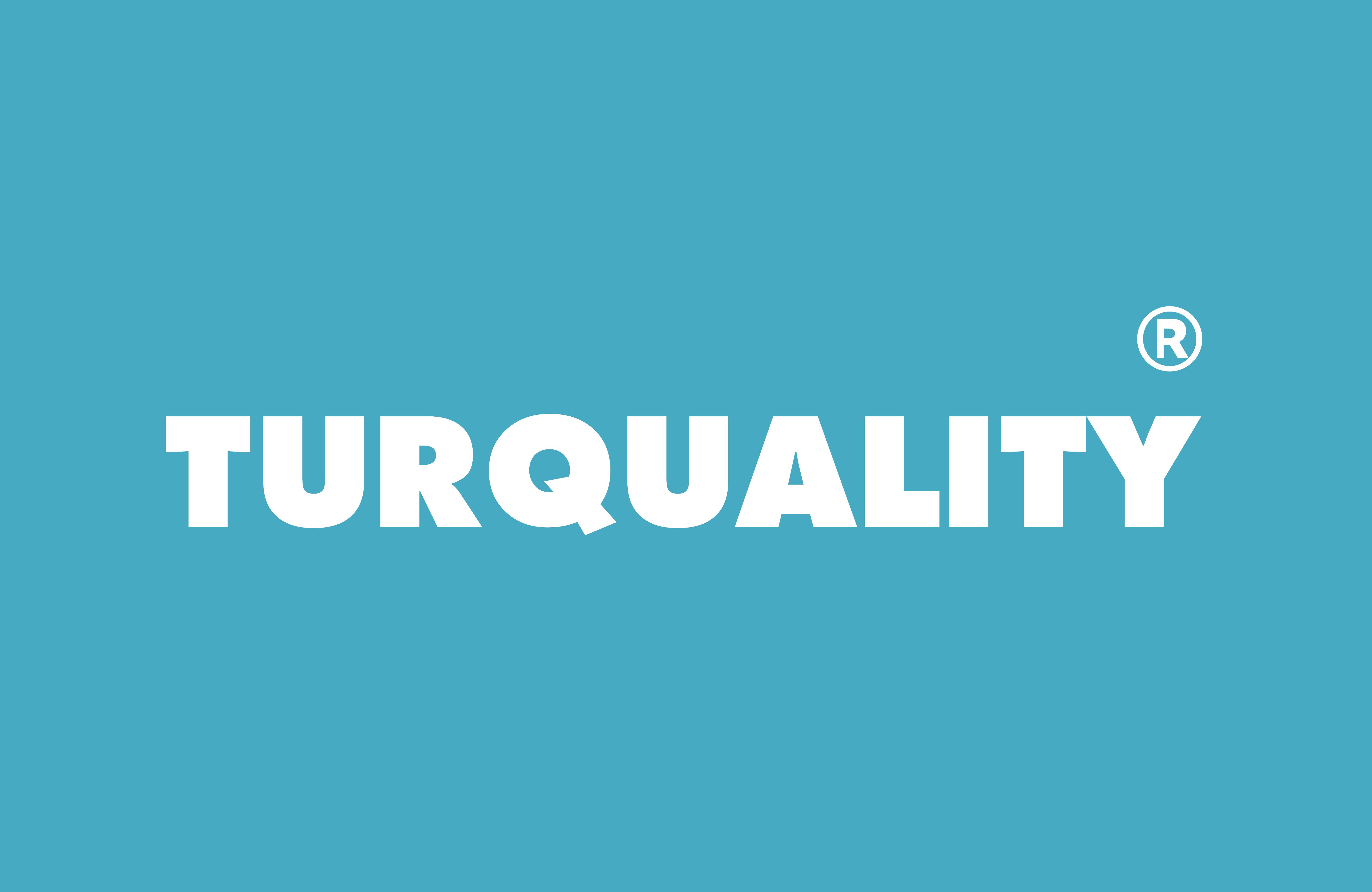 turquality destek programları