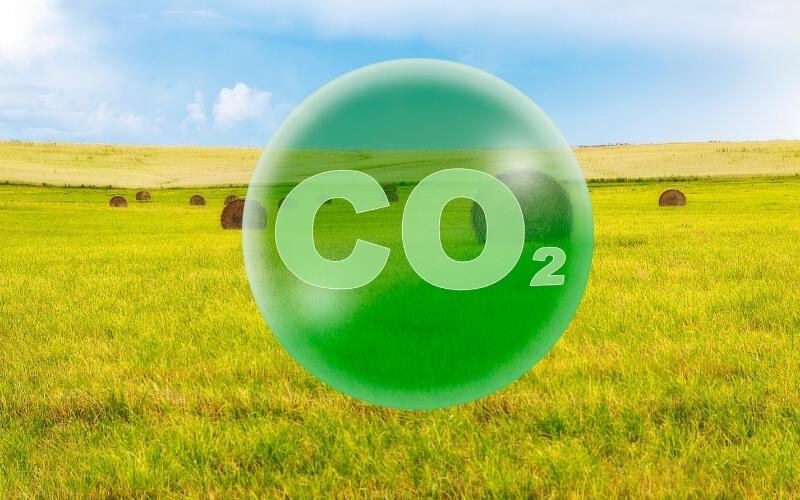 Avrupa Yeşil Mutabakatı Green deal sözleşmesi
